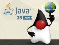 Java 25 years