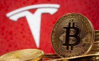 Bitcoin Tesla Mask