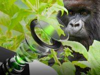 Corning Gorilla Glass DX and DX plus